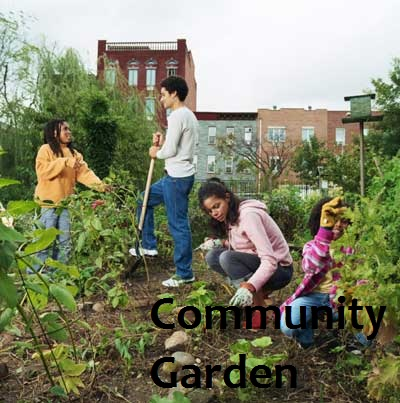 Volunteer community garden
